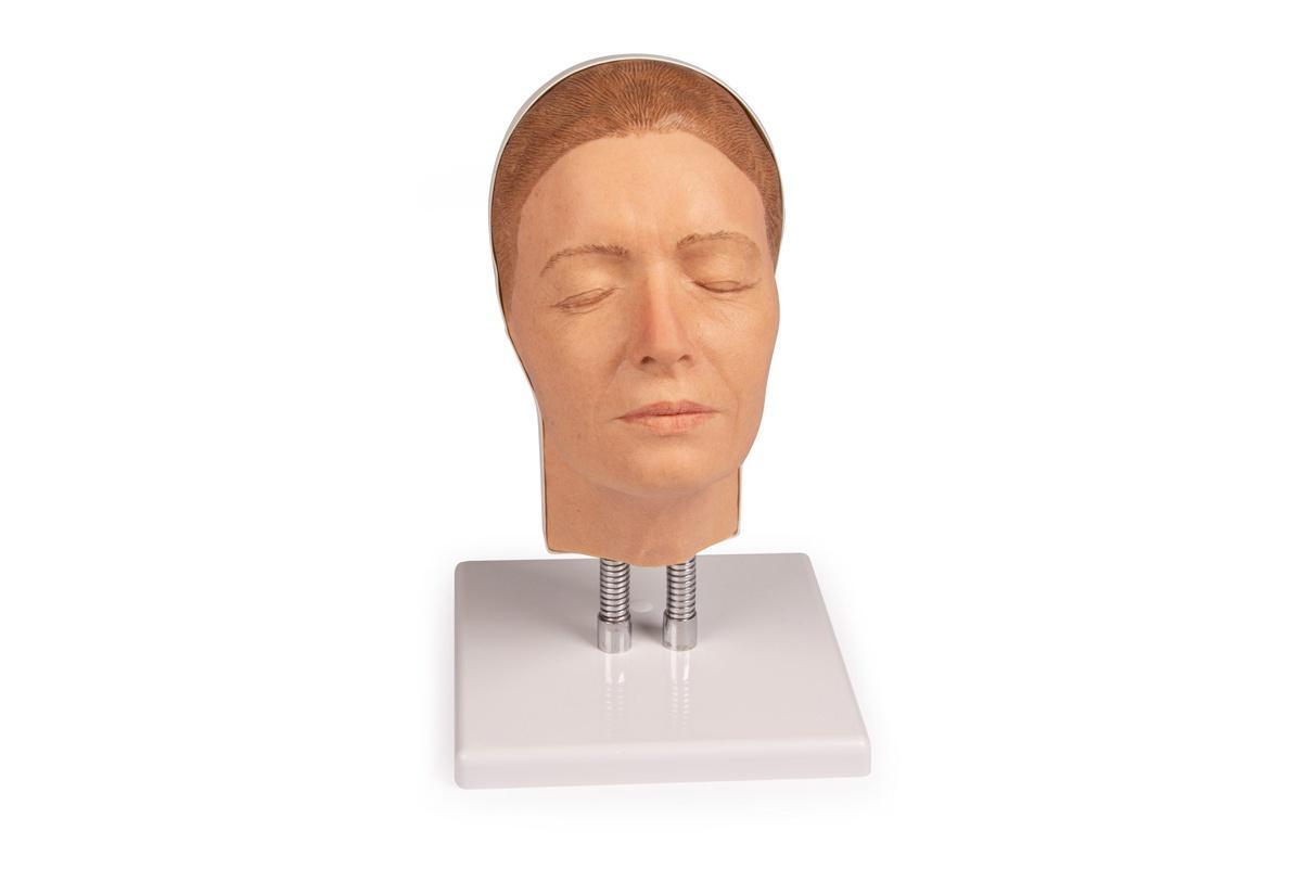simulador para inyecciones faciales